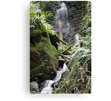 Unnamed falls Canvas Print