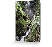 Unnamed falls Greeting Card