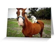 Cat Riding Foal Greeting Card