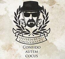 Heisenberg university crest by Vin  Zzep