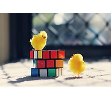 Toy Chickens - Puzzle Photographic Print