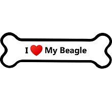 I Love My Beagle Photographic Print