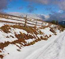 Rural Snowy Road in The Mountains by kirilart