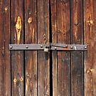 Old Wooden door locked with rusty padlock by kirilart