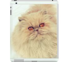 Who are you calling a big ball of fur?  iPad Case/Skin