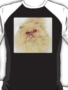 Who are you calling a big ball of fur?  T-Shirt