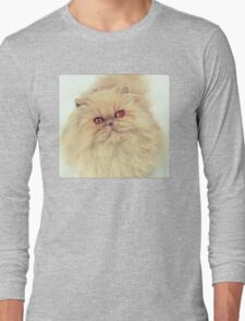 Who are you calling a big ball of fur?  Long Sleeve T-Shirt