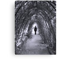 The road goes ever on Canvas Print