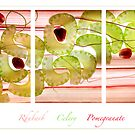 Rhubarb, Celery and Pomegranate by Rachael Talibart