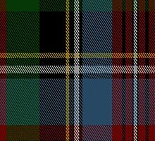 01489 Sir Samuel Leonard Tilley Commemorative Tartan Fabric Print Iphone Case by Detnecs2013