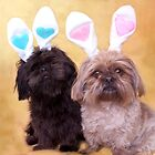 Easter Doggies  by SimplyKlick