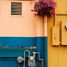 A Colorful Alley by Lee LaFontaine