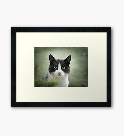 Nobody Knows the Troubles I've Seen 2 Framed Print