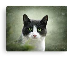 Nobody Knows the Troubles I've Seen 2 Canvas Print