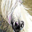 Horse blowing in the wind by Go van Kampen