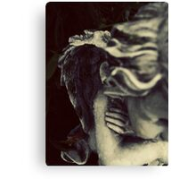 Wings of Love Canvas Print