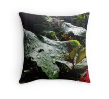 Spashed Throw Pillow