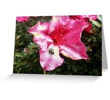 Greenbottle in pink Greeting Card