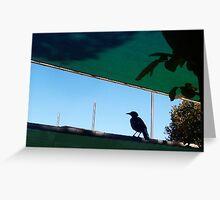 Shade Cloth Magpie - 31 03 13 Greeting Card