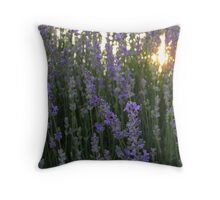 Lavender Close up with Sunlight Throw Pillow