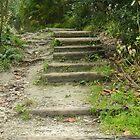 Spital Pond Stairs by kchase