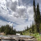 Stream & waterfall with dramatic clouds by Brian D. Campbell