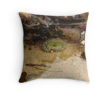 Laguna Beach Tidepool Throw Pillow