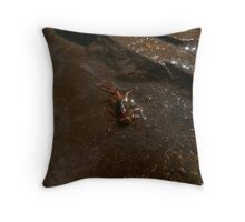 March Brown Mayfly Nymph Throw Pillow