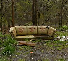 Roadside Couch by Chad Burrall