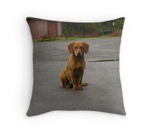 Northfork, WV Puppy Throw Pillow