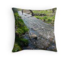 North Fork, Elkhorn Creek Throw Pillow