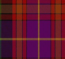 01504 Tribal #2 Tartan Fabric Print Iphone Case by Detnecs2013