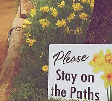Please Stay on the Path by urvid