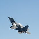 USAF F-22 Raptor by Mark Prior
