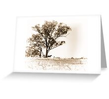 Lone horse Greeting Card