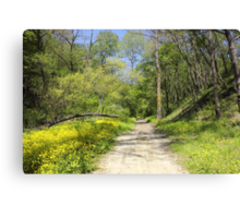 Forest Path with vibrant yellow flowers Canvas Print