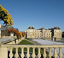 The Luxembourg Palace in Paris France by kirilart