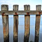 Wooden Poles at Point Roadknight by PaperRosePhoto