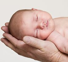 Resting In The Hands Of The Father by Amy Dee
