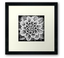 Flowerscapes – BW Corona Framed Print