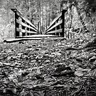 Bridge~black and white by Amanda McHady