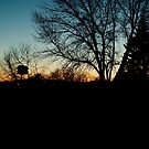 Morning Silhouette by Scott Hendricks