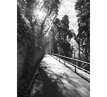 A shady pathway Photographic Print