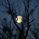 Moonset Good Friday by Kelly Chiara