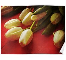 White Tulips over Red Poster