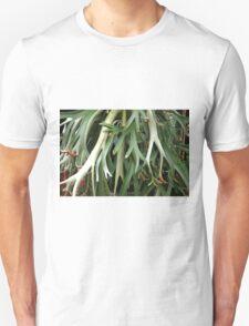 Platycerium coronarium Unisex T-Shirt