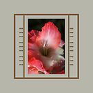 Red And White Gladiolus Flower With Design by Joy Watson