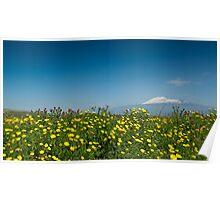 Mt. Etna in springtime Poster