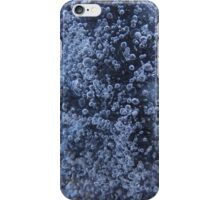 Frozen Fountain iPhone Case/Skin