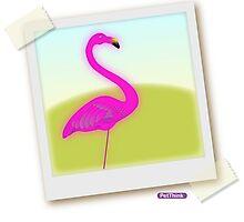 Lawn Bird by PetThink